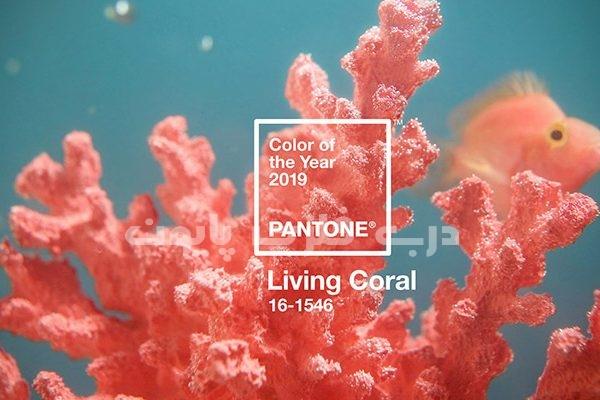 رنگ مرجانی و یاگلبهی رنگ سال ۲۰۱۹