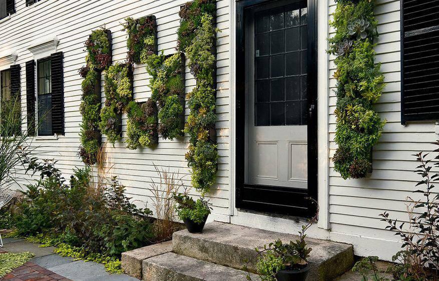 استفاده از گلدان های آویزان و فضای سبز برای طراحی دکوراسیون نمای بیرونی ساختمان
