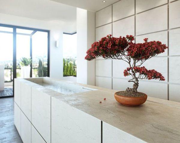 تزیین خانه با گل و گیاه و داشتن دکوری زیبا و شیک