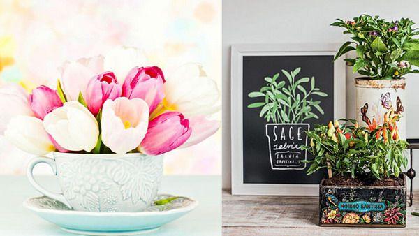 خلاقیت استفاده از گلدان ها در دکوری منزل
