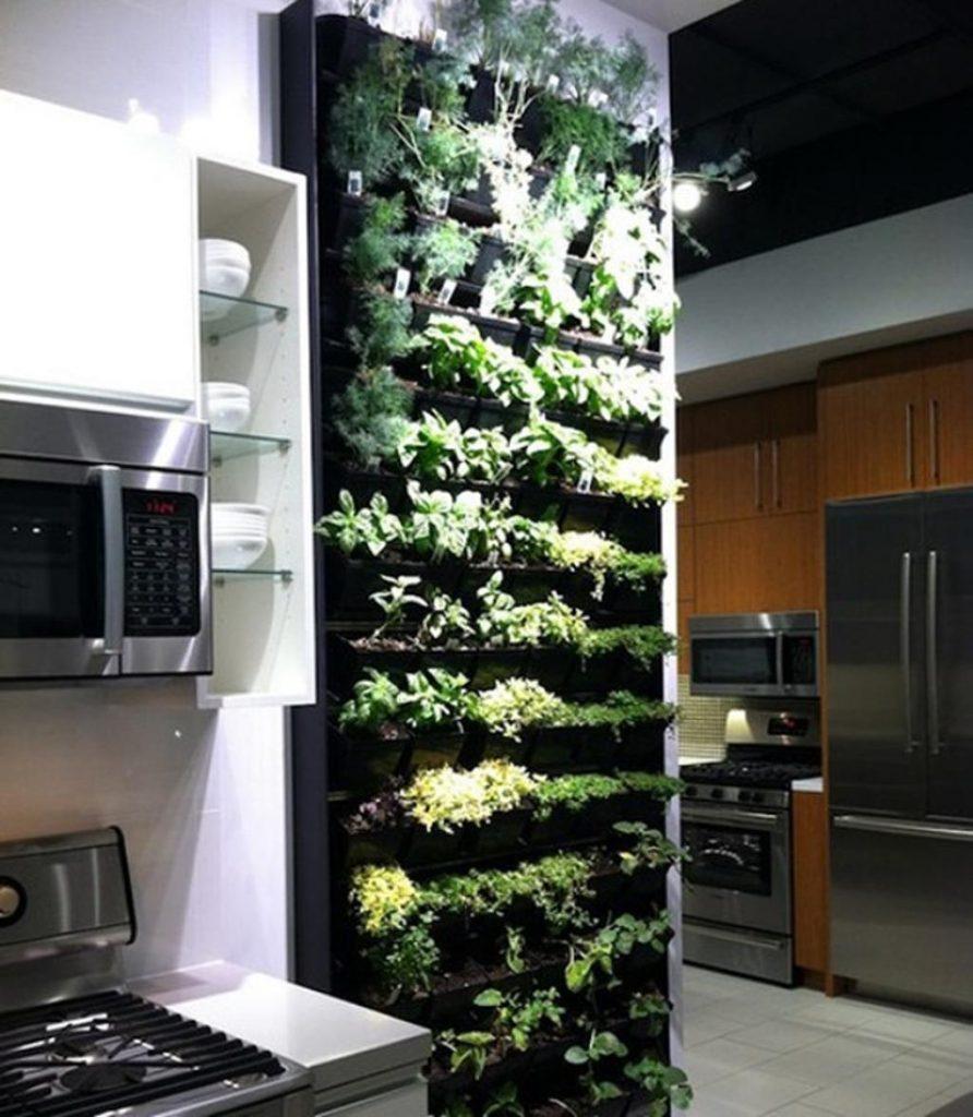 ایده خلاقانه طبیعت درون آشپزخانه