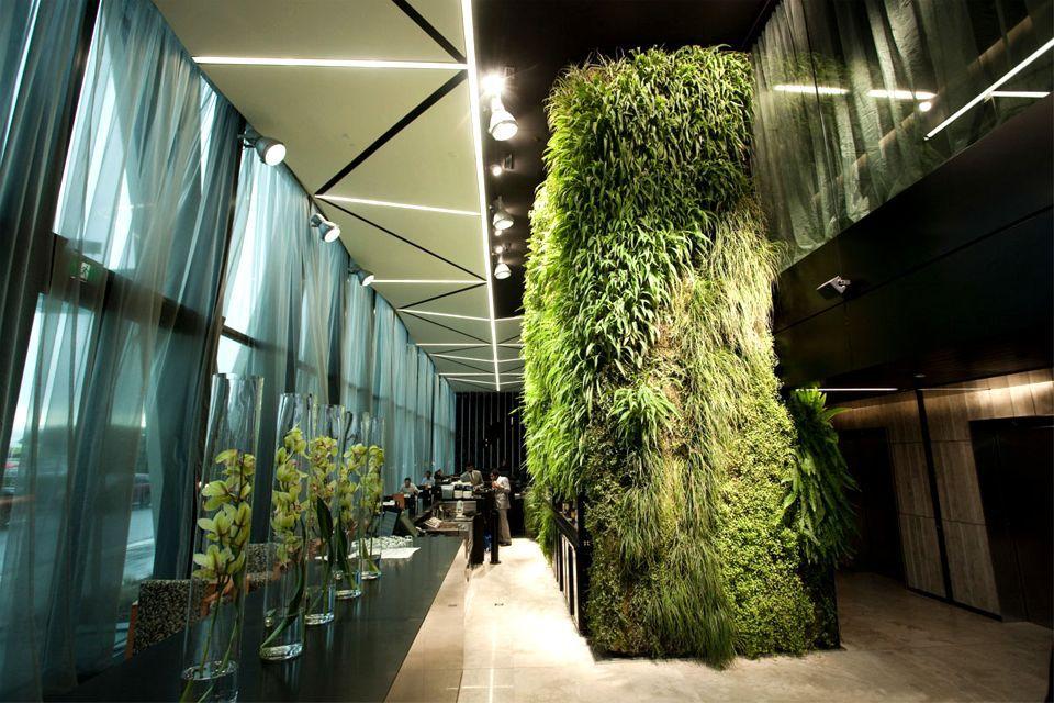 طراحی فضای سبز در هتل، یک ایده جذاب برای طراحی دکوراسیون داخلی